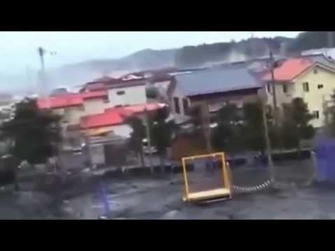 La misteriosa creatura ripresa in Giappone durante lo Tsunami (2011)