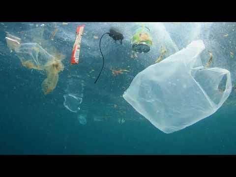 DOLCEDO PLASTIC FREE: L'ORDINANZA DEL COMUNE A SOSTEGNO DELL'AMBIENTE