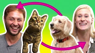 Two Pets Swap Humans For A Weekend thumbnail
