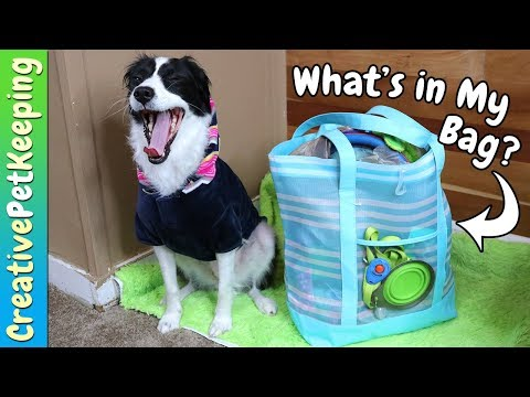 What's In My Bag? | Dog Camping Edition