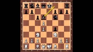 King's Gambit: Falkbeer Countergambit