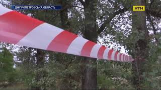 13-річну школярку жорстоко вбили Дніпропетровщині