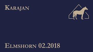 video of Karajan