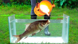 Experiment: LAVA Vs FISH Under Water!