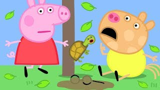 Peppa Pig Official Channel | Calling Doctors for Pedro's Nose
