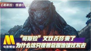 """""""哥斯拉""""又双叒叕来了 为什么这只怪兽总跟地球过不去?【今日影评   Movie Talk】"""