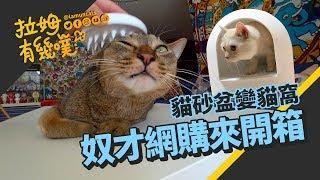 ►拉姆有幾噗◄ 網購來開箱 雪屋貓砂盆變貓窩 ┃Unboxing pet supplies ☁