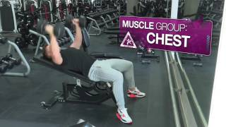 Dylan DawsonProfessional Trainer Muscle Model demonstrating the Dumbbell fly on a bench