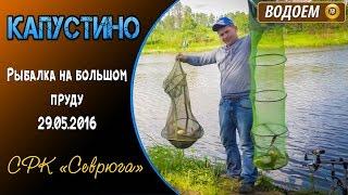 Рыбалка в чеховском районе капустино