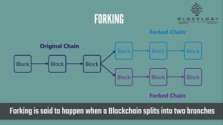 Blocklogy - What is Forking in Blockchain?
