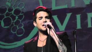 Adam Lambert  - Banter and There I Said It - Live In the Vineyard, Napa 2015 11 06 009