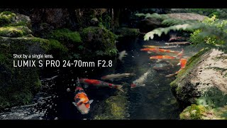 YouTube Video LKc7ihkZ_Pg for Product Panasonic Lumix S Pro 24-70mm F2.8 Lens (S-E2470) by Company Panasonic Corporation in Industry Lenses
