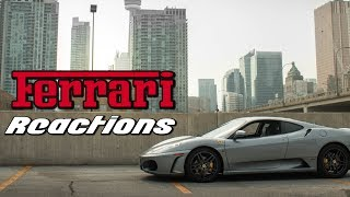 Ferrari Reaction - Good, Bad and Typical (E10)