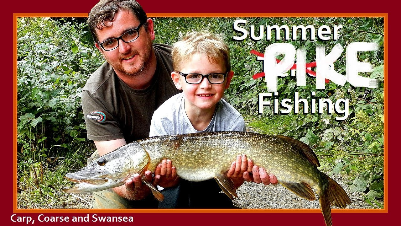 Summer Fishing at Bosherston Lily Ponds. Video 160.