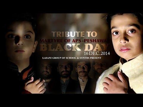 Great Tribute To Martyrs Of APS - Peshawar - Presentation Lasani School - Hi-Tech Islamic