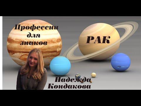 Рак  Профессии для рака   Западная астрология  Надежда Кондакова