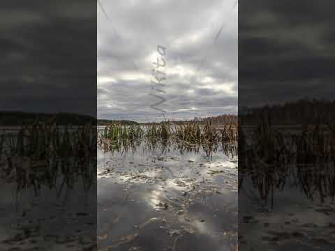 Vertical video. Low clouds reflected in the water. Autumn, Russia. HDR. TimeLapse
