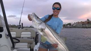 CATCHING BIG Snook with Live Bait