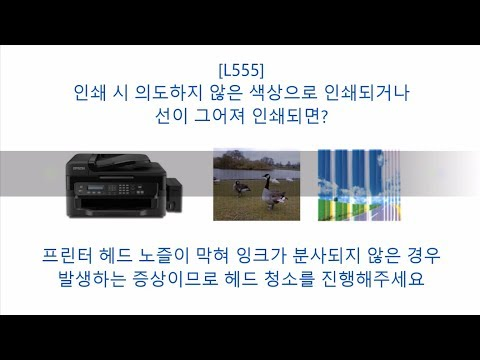 L555 헤드 청소 방법