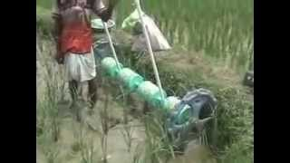 preview picture of video 'Fertilizer Application in Paddy Field by Rice Drum Seeder BURDWAN'