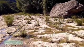Čudesné historické skladby v Bull Creek v Austine Texas, USA