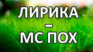 MC Пох - Лирика