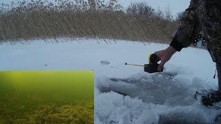 Отзывы электронная удочка для зимней рыбалки удача-4