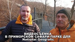 ВИДЕОСЪЁМКА В ПРИМОРСКОМ САФАРИ-ПАРКЕ ДЛЯ National Geografic