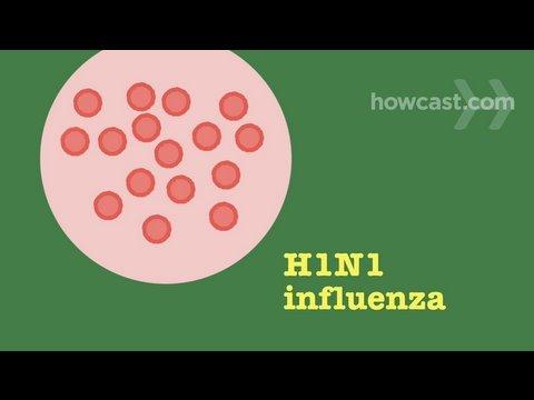 Video How to Prevent & Recognize Symptoms of Swine Flu