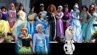 Disney Princess Party Fairytale Castle Elsa Anna Rapunzel Elena Ariel Cinderella Merida