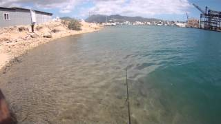 preview picture of video 'TRYING TO FISH OFF SAND ISLE - DOWNTOWN, HONOLULU!'