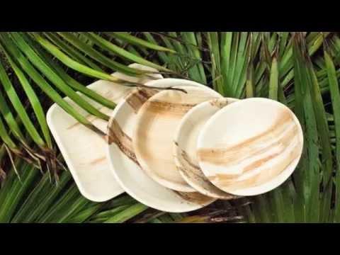 EcoSouLife - Palm Leaf range production