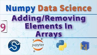 Python Data Science, How to Add and Remove Elements From Arrays Using Python NumPy Functions 📓🐍📐