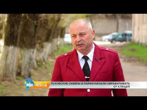 Новости Псков 16.05.2017 # Псковские скверы и парки начали обрабатывать от клещей