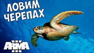Altis life arma 3 как ловить черепах