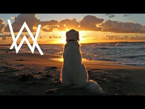 Alan Walker - Happy Walker (New Song 2020)