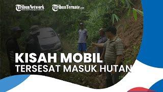 Cerita Sopir Mobil yang Tersesat di Hutan, Lihat Jurang lalu Belok di Jalan Bagus dan Banyak Lampu
