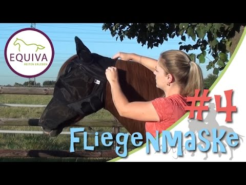 """[EQUIVA Serie] #4 - Fliegenmaske 4Horses """"Soft"""" + Infos zur Größe"""