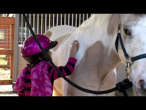 ManeGait Therapeutic Horsemanship – Sophie's Story