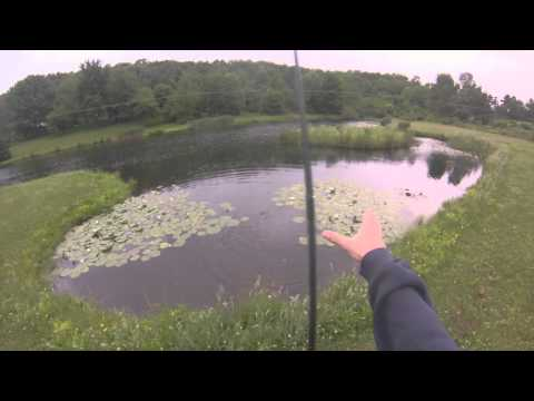 Pond Fishing with The Zoom Super Fluke- GoPro HERO3