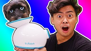 Trying Dog Gadgets You Never Knew About