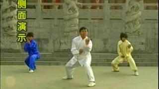 Фохань цюань учебное видео 2