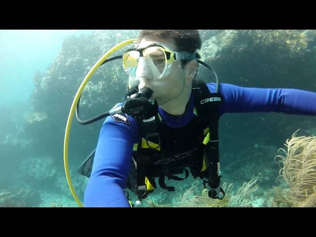 Scuba Diving the Eastwind Reef - St. Thomas Virgin Islands