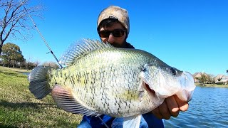 The BIGGEST CRAPPIE Ive EVER SEEN!
