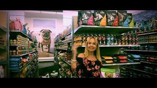 Best foods for senior dogs