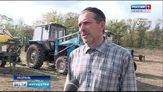 В республике успешно функционируют десятки крестьянско -фермерских хозяйств