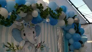 Baby Shower  Little Elephant