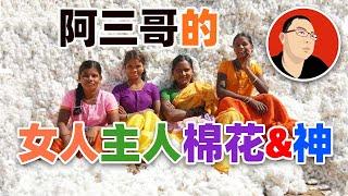 【印度】阿三哥的女人、主人、棉花&神