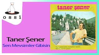Taner Şener / Sen Mevsimler Gibisin