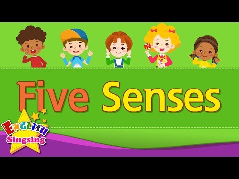 Download Kids vocabulary - Five Senses - Learn English for kids - English educational video Mp4 HD Video and MP3